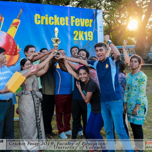 Cricket Fever 2019